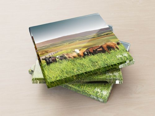 Rolling Hills With Cows Ultra Marine - Glass Coasters